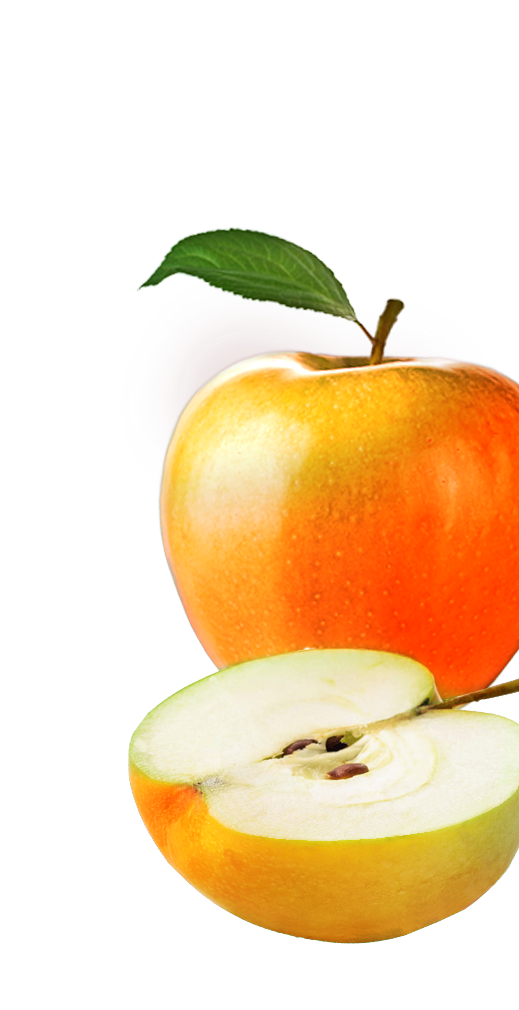 Apple-roed-red-aeble-hoejre-frugt-nederst.png